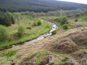 The-Kershope-Burn-divides-Scotland-from-England